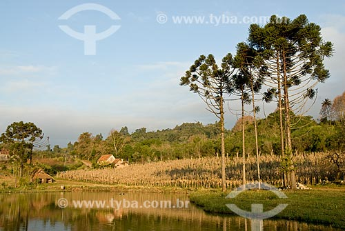 Assunto: Vila Fitarelli  / Local: Garibaldi - Rio Grande do Sul (RS) - Brasil / Data: 06/2009