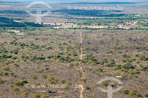 Assunto: Vista aérea de vegetação da caatinga / Local: Distrito Umãs - Salgueiro - Pernambuco (PE) - Brasil / Data: 08/2010