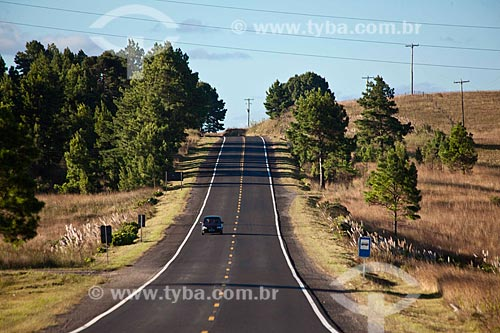 Assunto: Rodovia estadual RS-235 / Local: Rio Grande do Sul (RS) - Brasil / Data: 03/2011