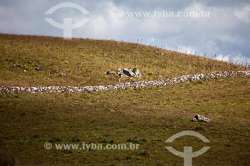 Assunto: Muralha de Taipa (muro de pedra feito sem qualquer outro material para construção) - Região de Campos de Cima da Serra / Local: Rio Grande do Sul (RS) - Brasil / Data: 03/2011