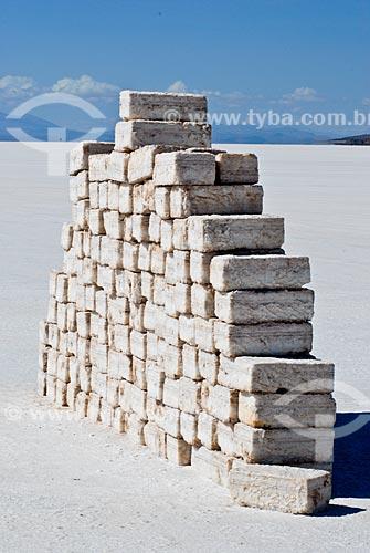 Assunto: Bloco de sal empilhados no Salar de Uyuni - Altiplano boliviano / Local: Bolívia - América do Sul / Data: 01/2011