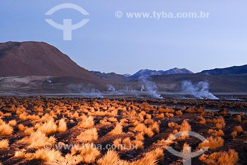 Assunto: Gêiseres de Tatio / Local: Deserto do Atacama - San Pedro de Atacama - Chile  / Data: 01/2011