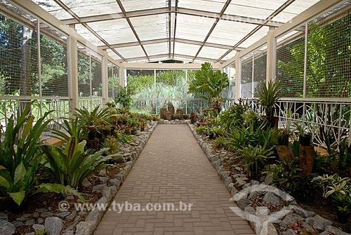 Assunto: Bromeliário / Local: Jardim Botânico - Rio de Janeiro (RJ) - Brasil / Data: 11/2010