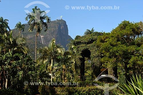 Assunto: Cômoro Frei Leandro / Local: Jardim Botânico - Rio de Janeiro (RJ) - Brasil / Data: 11/2010