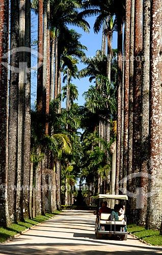 Assunto: Turistas andando de carro no Jardim Botânico / Local: Jardim Botânico - Rio de Janeiro (RJ) - Brasil / Data: 2010