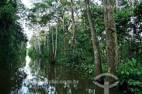 Assunto: Igarapé no Rio Amazonas / Local: Parintins - Amazonas (AM) - Brasil / Data: 06/2011