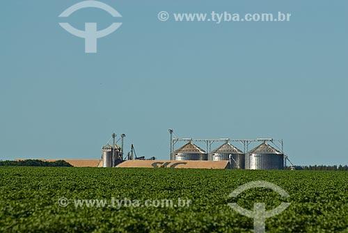 Assunto: Vista de silo e plantação de soja / Local: Distrito Baús - Costa Rica - Mato Grosso do Sul (MS) - Brasil / Data: 02/2010