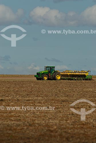 Assunto: Plantação de soja  / Local: Distrito Baús - Costa Rica - Mato Grosso do Sul (MS) - Brasil / Data: 02/2010