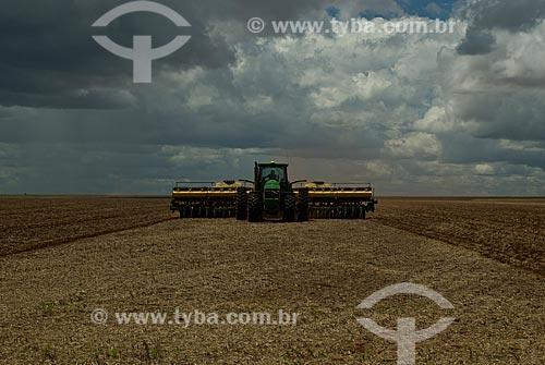 Assunto: Plantação de algodão  / Local: Distrito Baús - Costa Rica - Mato Grosso do Sul (MS) - Brasil / Data: 02/2010