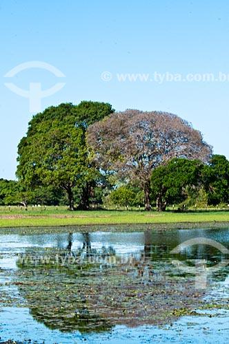 Assunto: Lagoa na Fazenda São João  / Local: Corumbá - Mato Grosso do Sul (MS) - Brasil / Data: 10/2010