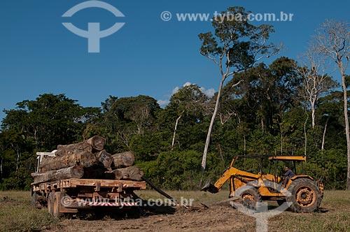 Assunto: Carregamento de toras de madeira no Seringal Cachoeira / Local: Xapuri - Acre (AC) - Brasil / Data: 07/2008
