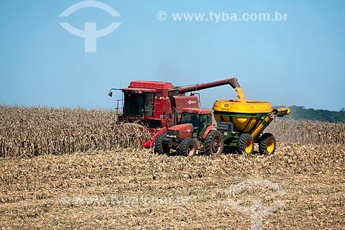 Assunto: Colheita de milho / Local: Capão Bonito do Sul - Rio Grande do Sul (RS) - Brasil / Data: 04/2011