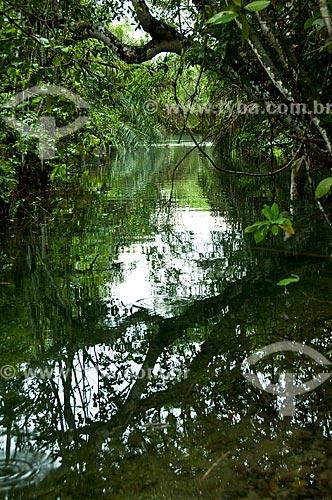 Assunto: Rio Formoso / Local: Bonito - Mato Grosso do Sul (MS) - Brasil / Data: 10/2010