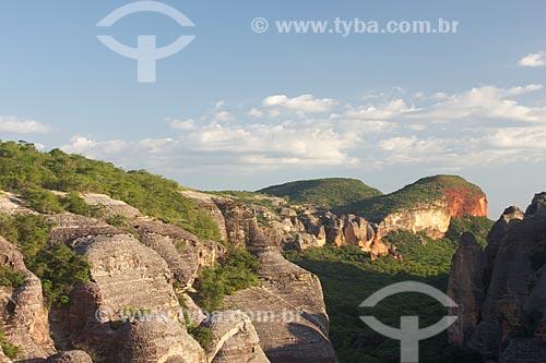 Assunto: Vista do Baixão das Andorinhas no Parque Nacional Serra da Capivara / Local: São Raimundo Nonato - Piauí (PI) - Brasil / Data: 01/2010