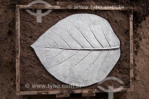 Assunto: Projeto Encauchados Vegetais, molde de aluminio em formato de folha - Reserva Extrativista Cazumbá / Local: Sena Madureira - Acre (AC) - Brasil / Data: 11/2011