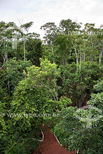 Assunto: Parque Ambiental Chico Mendes / Local: Rio Branco - Acre (AC) - Brasil / Data: 11/2011