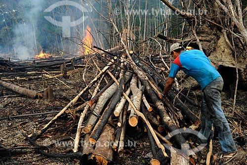 Assunto: Homem arrumando troncos para queimada às margens da Rodovia AM-352 / Local: Novo Airão - Amazonas (AM) - Brasil / Data: 11/2010