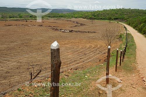 Assunto: Propiedade cercada e arada para plantio / Local: Araçuaí - Minas Gerais (MG) - Brasil / Data: 11/2011