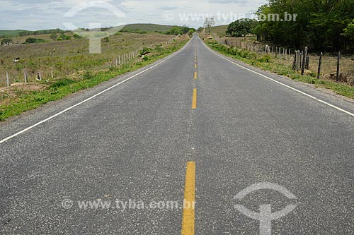 Assunto: Rodovia BR-367 / Local: Coronel Murta - Minas Gerais (MG) - Brasil / Data: 11/2011