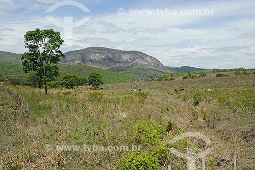 Assunto: Paisagem do Vale do Jequitinhonha / Local: Coronel Murta - Minas Gerais (MG) - Brasil / Data: 11/2011