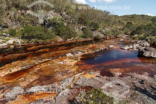Assunto: Rio no caminho para a Cachoeira da Fumaça / Local: Bahia (BA) - Brasil / Data: 01/2012