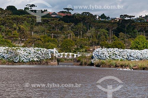Assunto: Parque do Palácio das Hortênsias / Local: Canela - Rio Grande do Sul (RS) - Brasil / Data: 01/2012