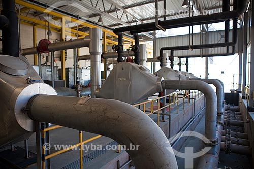 Bagaço de cana-de-açúcar na Usina de Cogeração (Açúcar, Etanol e Energia elétrica) da empresa Guarani  - Olímpia - São Paulo (SP) - Brasil
