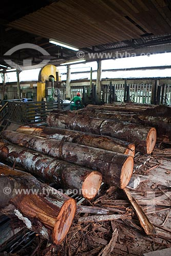 Assunto: Toras de madeira na madeireira Precious Woods Amazon  / Local: Itacoatiara - Amazonas (AM) - Brasil / Data: 10/2011