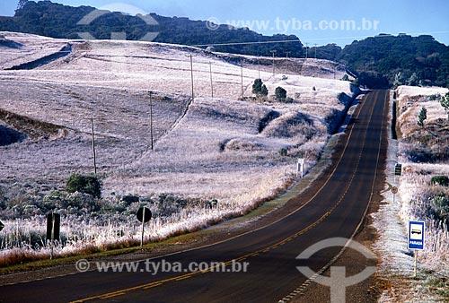 Assunto: Vsita de campo com geada / Local: Rio Grande do Sul (RS) - Brasil / Data: 07/2009