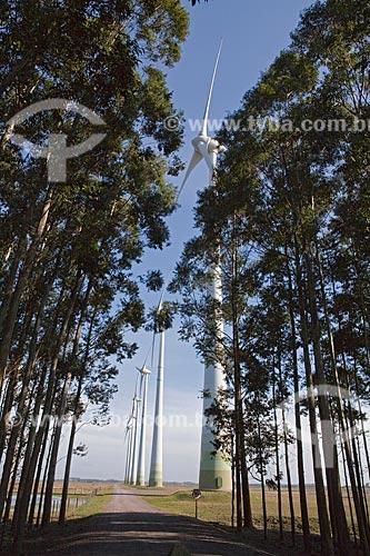 Assunto: Parque Eólico de Osório / Local: Osório - Rio Grande do Sul (RS) - Brasil  / Data: 09/2011