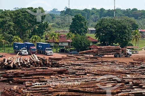 Assunto: Pátio com toras de madeira certificada da empresa Precious Wood Amazon  / Local: Itacoatiara - Amazonas (AM) - Brasil / Data: 10/2011