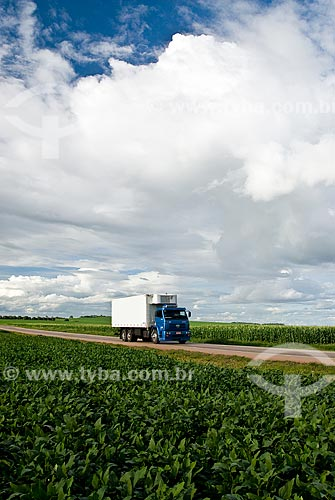 Assunto: Caminhão transportando soja - Trecho da Rodovia BR-163 / Local: Rondonópolis - Mato Grosso (MT) - Brasil / Data: 2010