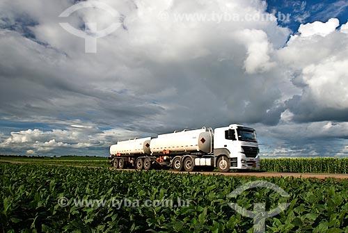 Assunto: Caminhão de combustível passando em plantação de soja e milho - Trecho da Rodovia BR-163 / Local: Rondonópolis - Mato Grosso (MT) - Brasil / Data: 2010