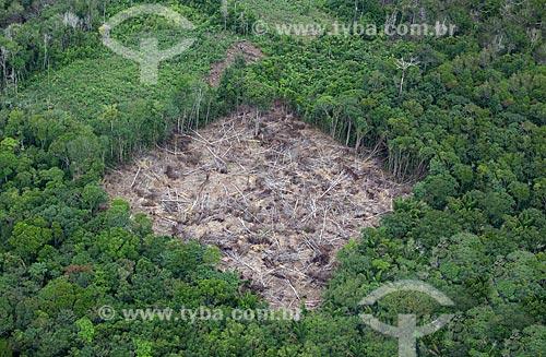 Assunto: Vista aérea de área desmatada perto da comunidade ribeirinha de Bom Jesus do Puduari  / Local: Novo Airão - Amazonas (AM) - Brasil / Data: 10/2011
