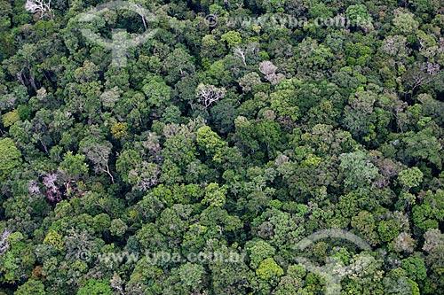 Assunto: Vista aérea da Floresta Amazônica na comunidade ribeirinha de Bom Jesus do Puduari  / Local: Novo Airão - Amazonas (AM) - Brasil / Data: 10/2011