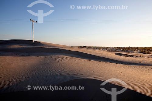 Assunto: Transmissão de energia elétrica no Parque Nacional da Lagoa do Peixe / Local: Mostardas - Rio Grande do Sul (RS) - Brasil / Data: 02/2012