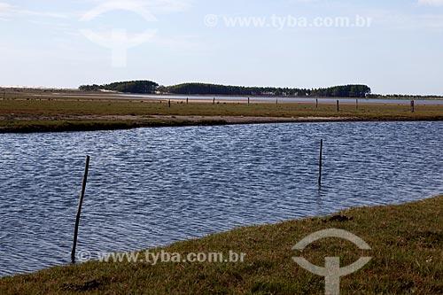 Assunto: Vista do Parque Nacional da Lagoa do Peixe / Local: Tavares - Rio Grande do Sul (RS) - Brasil / Data: 02/2012