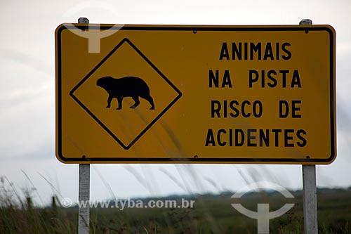 Assunto: Placa de aviso informando a presença de animais na pista - Estação Ecológica do Taim / Local: Santa Vitória do Palmar - Rio Grande do Sul (RS) - Brasil / Data: 02/2012