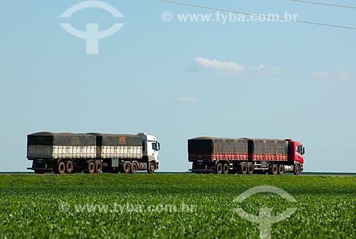 Assunto: Caminhões graneleiro passando em plantação de soja - Trecho da Rodovia BR - 153 / Local: Rondonópolis - Mato Grosso (MT) - Brasil / Data: 12/2011