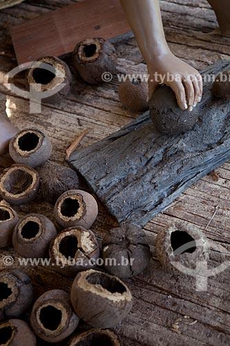 Assunto: Museu Sacaca - Ouriços da castanha / Local: Macapá - Amapá (AP) - Brasil / Data: 04/2012