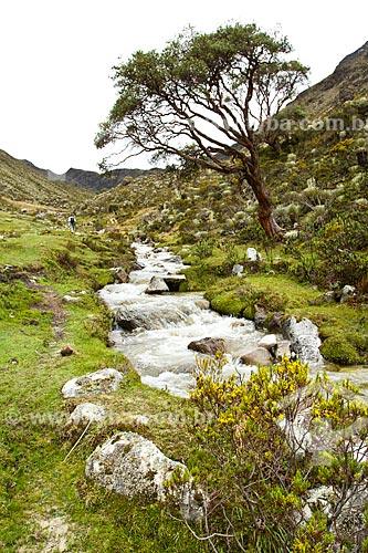 Assunto: Vista do rio que dá acesso a trilha do Pico Pan de Azúcar no Parque Nacional Sierra de la Culata / Local: Mérida - Mérida - Venezuela - América do Sul / Data: 05/2012