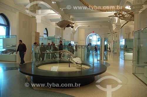 Assunto: Museu Americano de História Natural / Local: Nova Iorque - Estados Unidos da América - EUA / Data: 12/2008
