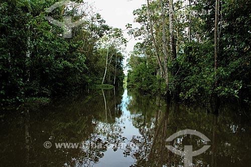 Assunto: Igarapé no Rio Amazonas na época de cheia / Local: Parintins - Amazonas (AM) - Brasil / Data: 06/2012