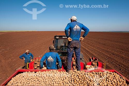 Assunto: Trabalhadores rurais com carregamento de batatas  / Local: Casa Branca - São Paulo (SP) - Brasil  / Data: 06/2011