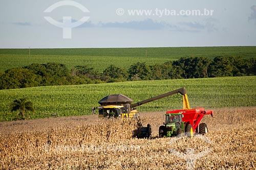 Assunto: Descarregamento de milho na zona rural de Itararé  / Local: Itararé - São Paulo (SP) - Brasil / Data: 02/2012