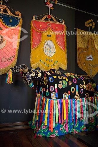 Assunto: Estandartes de carnaval e fantasia de bumba-meu-boi no Museu de Antropologia e Folclore Theo Brandão (1975) da Universidade Federal de Alagoas / Local: Maceió - Alagoas (AL) - Brasil / Data: 07/2012
