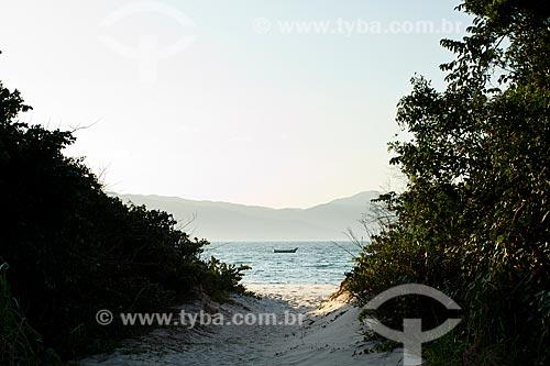Assunto: Praia da Daniela / Local: Florianopolis - Santa Catarina state (SC) - Brazil / Data: 08/2012