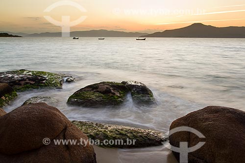 Assunto: Pôr do sol na Praia da Daniela / Local: Florianópolis - Santa Catarina (SC) - Brasil / Data: 08/2012