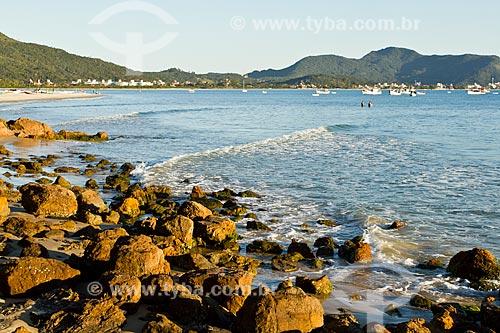 Assunto: Praia de Ponta das Canas / Local: Ponta das Canas - Santa Catarina (SC) - Brasil / Data: 09/2012