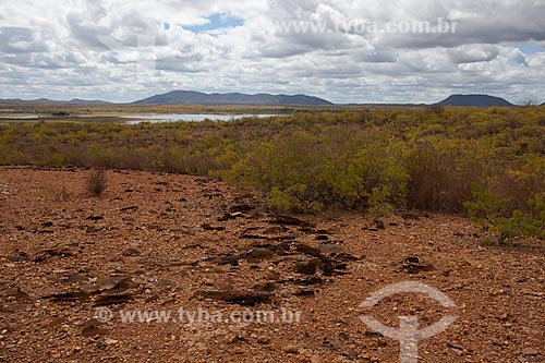 Assunto: Processo de desertificação do solo no Parque Estadual de Canudos - sertão da Bahia / Local: Canudos - Bahia (BA) - Brasil / Data: 06/2012